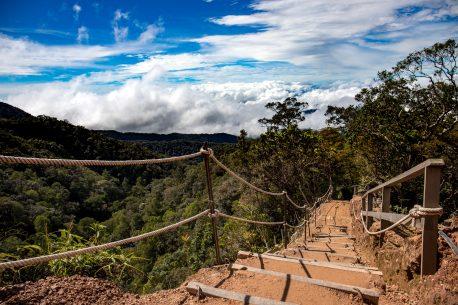 Trekking in Borneo