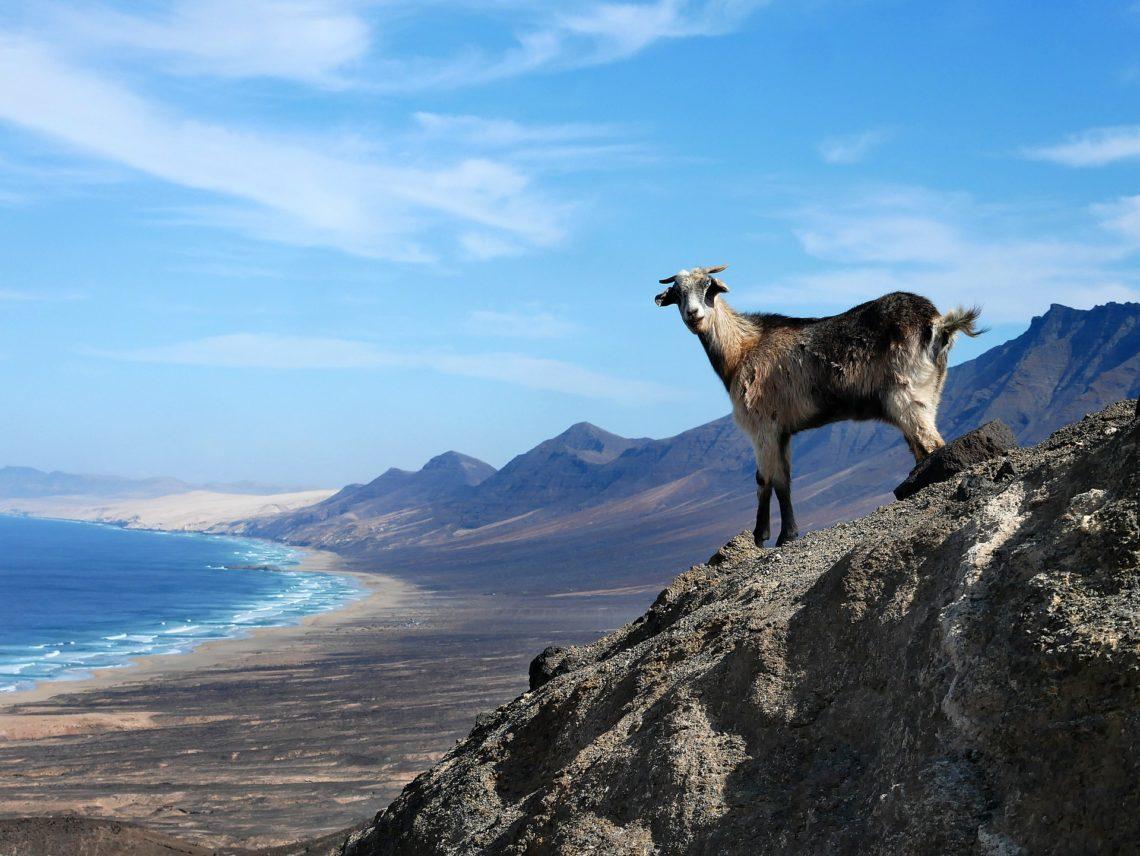 viaggio trekking Creta